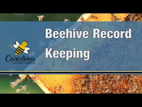 Beehive Records - Keeping Good Beekeeping Records Will Help You Manage your Honeybee Colonies