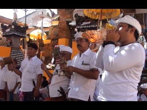 Upacara Mecaru Rsi Yadnya Ring Pura Desa Baleagung Dan Mrajapati Desa Pakraman Tulikup Kelod