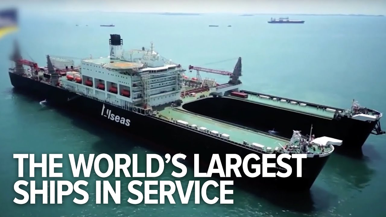 all the world s largest ships in service youtube