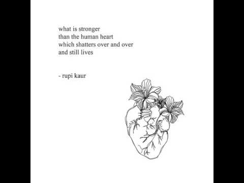 Image of: Bees No Quotes From Milk And Honey Youtube Quotes From Milk And Honey Youtube