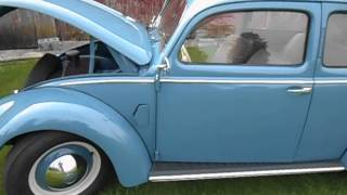 Video 1952 VW Delux Beetle - Show & Go Very Slow Car download MP3, 3GP, MP4, WEBM, AVI, FLV Juni 2017