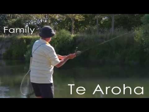 Te Aroha Historic Spa Town 4min