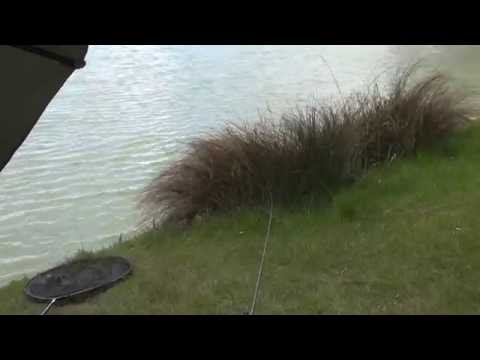 BROOK FARM FISHERY, ROMFORD, ESSEX, ANGLERS MAIL TACTICAL BRIEFINGS