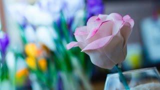 Кейк Попс Роза рецепт в домашних условиях