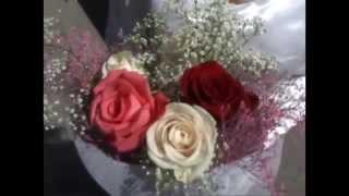Смотреть клип Наталья Онегина - Звон Обручальных Колец