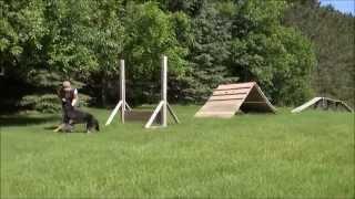 Rocco (German Shepherd) Dog Training Video