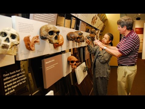 Surviving: The Body of Evidence; Private Tour with Janet Mon