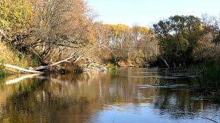 Ловля Щуки на Закоряженной Реке на Воблер Рыбалка