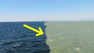Вот почему два океана никогда не смешиваются..