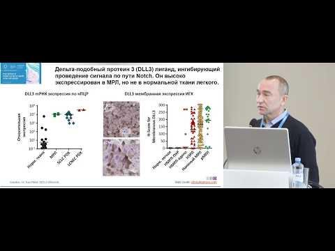 Что в ближайшие годы нас ждет нового в лечении мелкоклеточного рака легкого