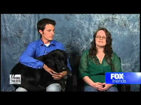 dog helps uncover babysitter abuse nightmare youtube