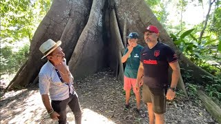 CHARLLES AND TIRINGA IN SEARCH OF THE LARGEST TREE IN THE AMAZON, SUMAÚMA | WILD COMEDY ®
