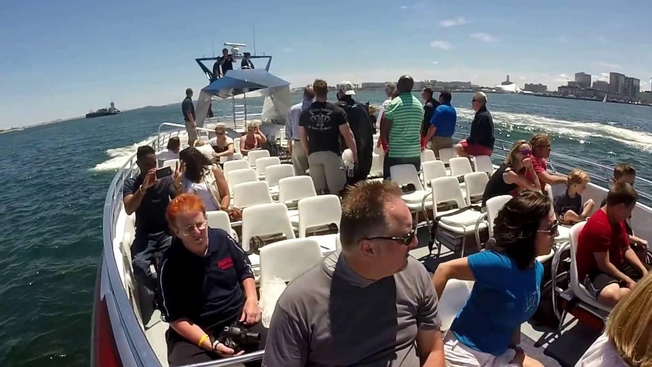 Codzilla Boat Ride Boston Mass