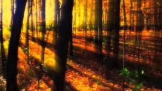 """""""Le quattro stagioni"""" Autunno 2.Adagio Molto-A. Vivaldi HQ"""