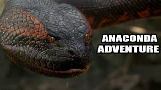 anaconda attack Hollywood movies in hindi full hd