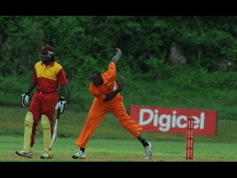 ✮✮✮Usain Bolt & Chris Gayle Playing Cricket | Chris Gayle bowled by Usain Bolt