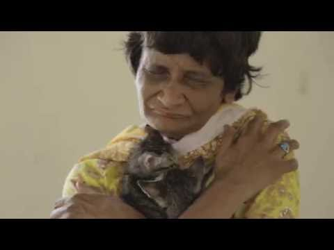 Sharmeen Obaid's latest documentary - ACF Animal Rescue