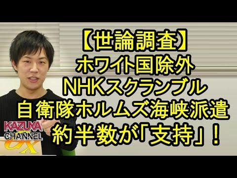 【世論調査】ホワイト国除外、NHKのスクランブル化・・・国民の半数が「支持」なんだってさw