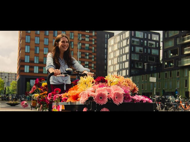 Cinefleur Amsterdam - City Tour: Brighten up with Gerbera 1
