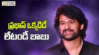 Rebal Star Prabhas On His Next Movie Update After Bahubali 2 - Filmyfocus.com