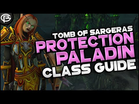 7.2.5 Basic Guides // Paladin - Protection