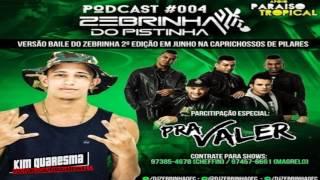 PODCAST 004 DO DJ ZEBRINHA DO PISTINHA[ AS MELHORES DO BAILE DO PISTINHA ] 2017