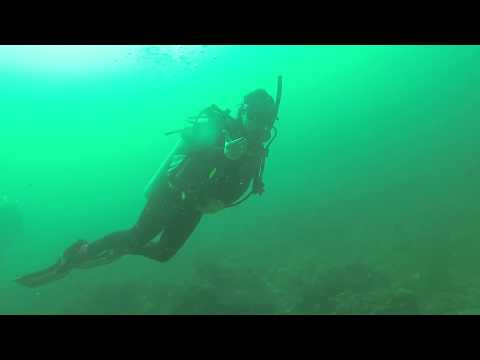 Diving Weekend in Oman