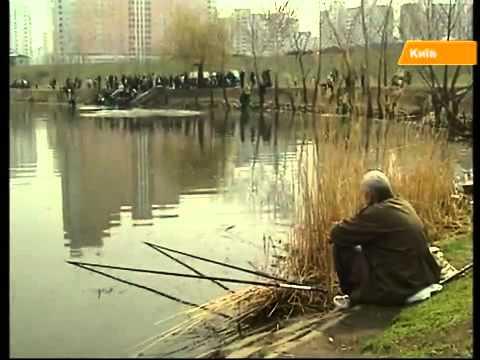 городская рыбалка киев