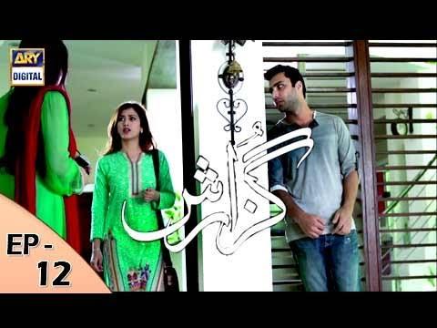 Guzarish Episode 12 - ARY Digital Drama