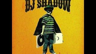DJ Shadow - Triplicate / Something Happened That Day (2006)