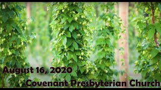 August 16, 2020 - Sunday Worship Service