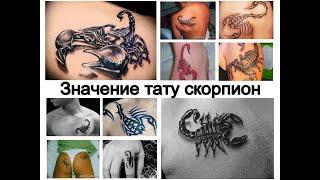 Значение тату скорпион - факты о рисунке и фото примеры для сайта tattoo-photo.ru