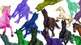 Every Old Town Road remix played at once