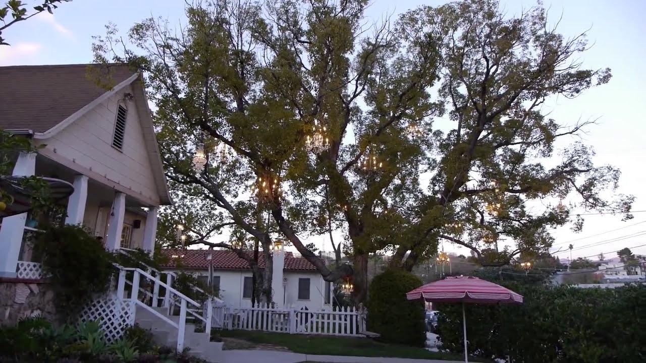 Watch artist build stunning Chandelier tree, become LA landmark ...