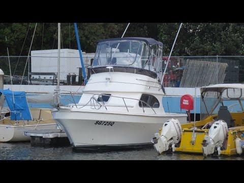 Deep V 260 Flybridge for sale Action Boating Boat Sales, Gold Coast, Queensland, Australia
