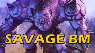Hearthstone - Savage BM at Rank 21