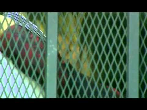 Mylo - In my arms (Tocadisco Rmx - Clean Video Remix Dj Freddy One) mp3