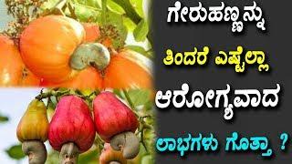 ಗೇರುಹಣ್ಣನ್ನು ತಿಂದರೆ ಎಷ್ಟೆಲ್ಲಾ ಆರೋಗ್ಯವಾದ ಲಾಭಗಳು ಗೊತ್ತಾ ? | Top 10 Amazing Benefits Of Cashew Nuts |