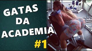 TOP VÍDEOS GATAS TREINANDO NA ACADEMIA #1