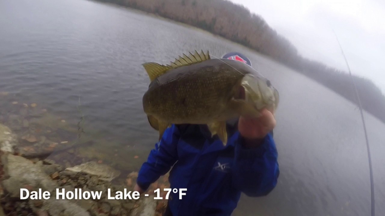 Dale hollow big smallmouth youtube for Dale hollow lake fishing report