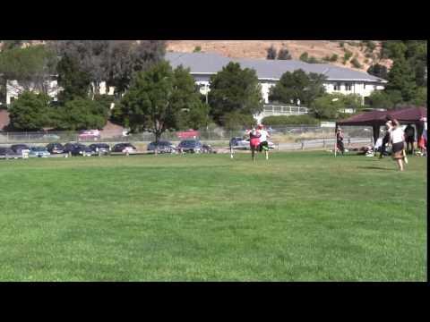 Video 449