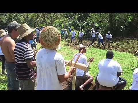 LASOTE - Martinique fonds st Denis