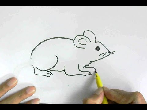 How To Draw Rat Or Mouse In Easy Steps For Children Kids Beginners