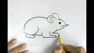 How to draw rat or mouse in  easy steps for children, kids, beginners