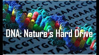 Big Picture Science: DNA Nature's Hard Drive - 17 September 2018