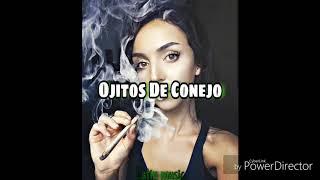 T3r Elemento🔥-Ojitos de Conejo | latin music (especial 4:20)