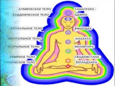 Заболевания нервной системы человека. Центральной и