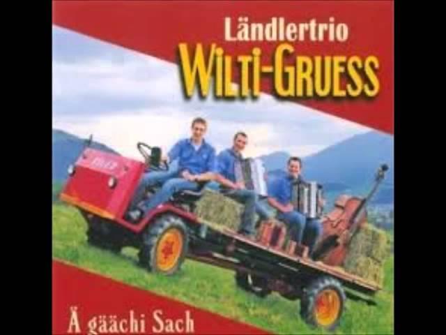 Ländlertrio Wilti gruess - Tschau potpourri #1
