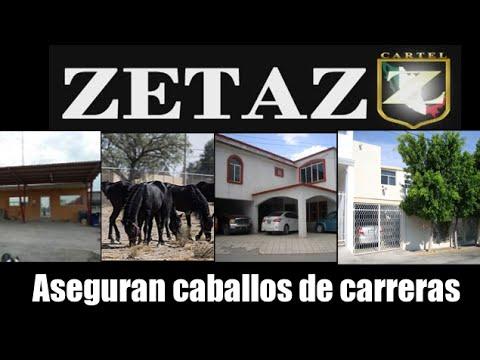 Aseguran caballos de carreras a Zetas en Coahuila