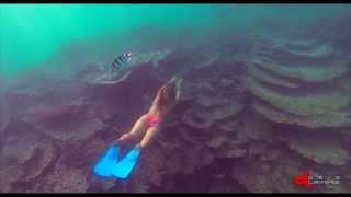 Diving BLUE BAY 2 | Mauritius Island